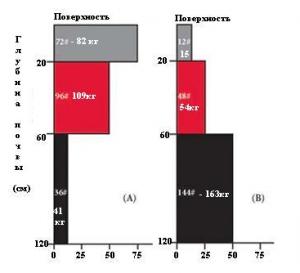 Два зразки вертикального розподілу нітрату в зоні кореня